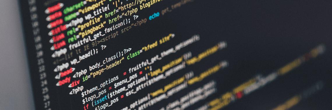 programavimo paslaugos